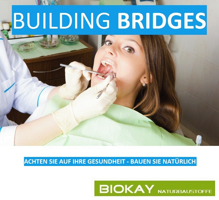 BIOKAY - Building Bridges